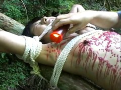 Japanese BDSM - Mai Itoh by Torture Master Shima