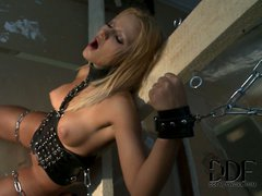 Helpless chain bound blonde Cherry Kiss shows off her lovely
