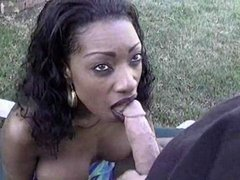 White dick gets black chick