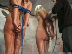 College for Sadists 6 by brutalpunishing part3